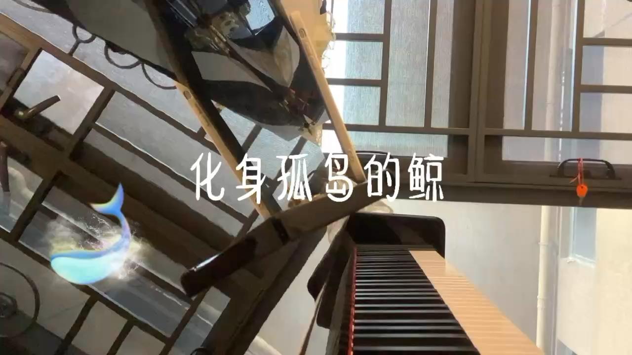 孤独的鲸演奏视频