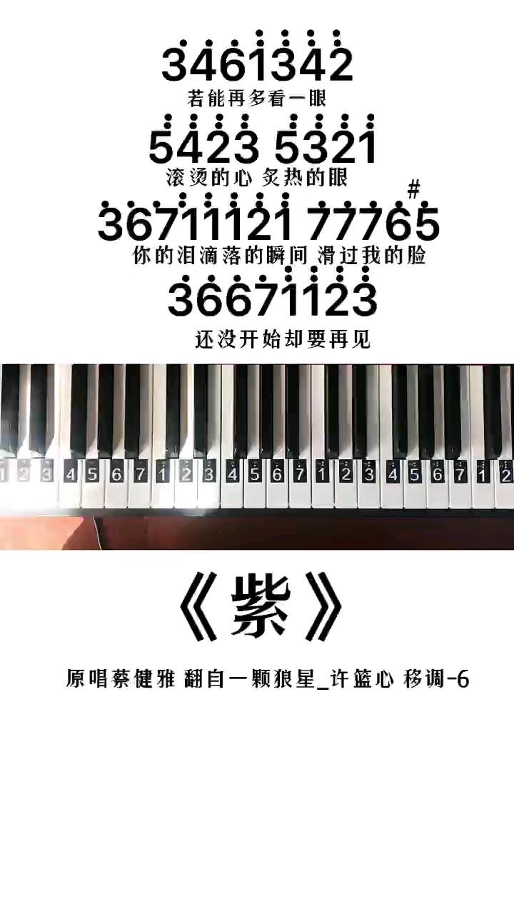 《紫》钢琴简谱教程演奏视频