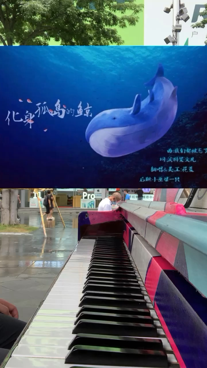 雨后街头随手弹《化身孤岛的鲸》…🌧️演奏视频