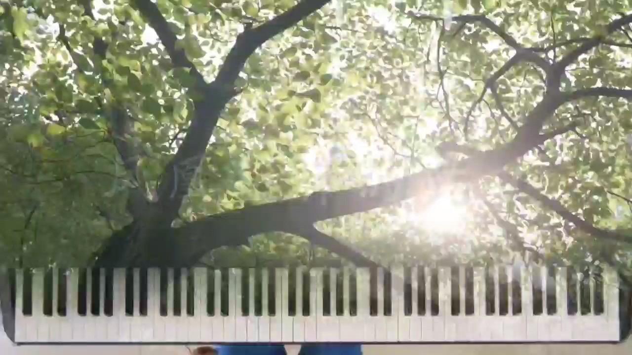 凤凰花开的路口 #高考加油 #钢琴演奏视频