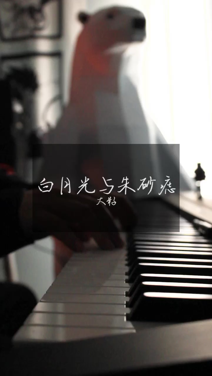 好好练琴演奏视频