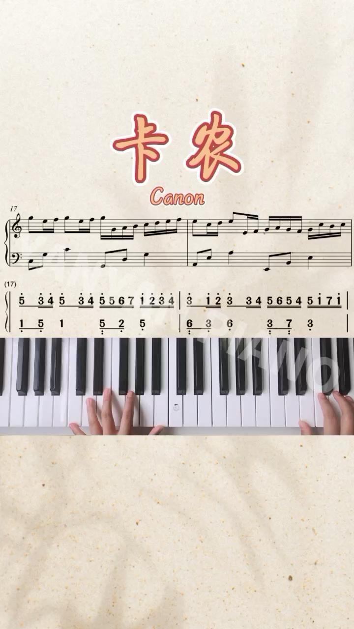 超简单版本【卡农Canon】演奏视频