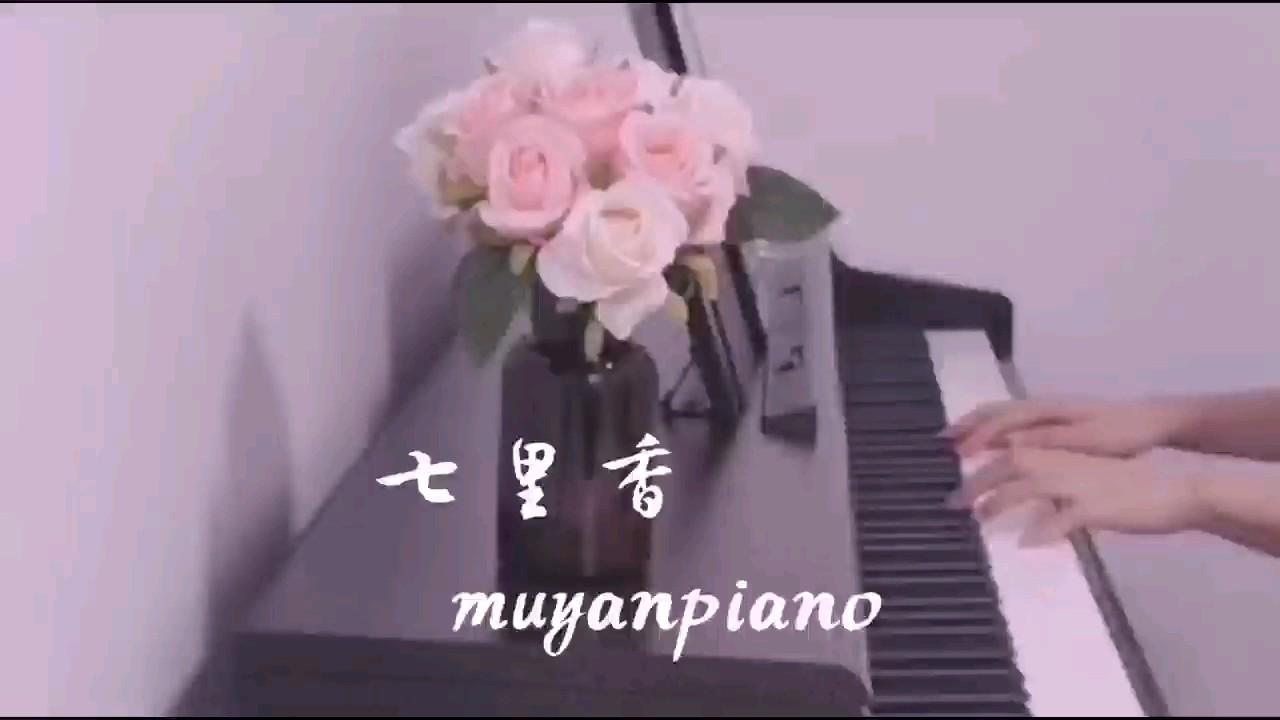 七里香演奏视频