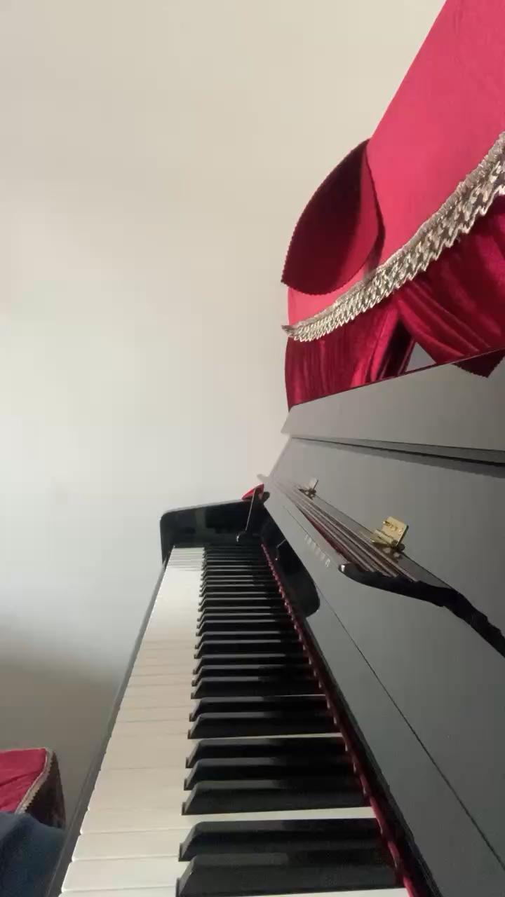 C调(性价比超高版)-《溯Reverse》(公式化伴奏+段落优化,抖音热播)演奏视频