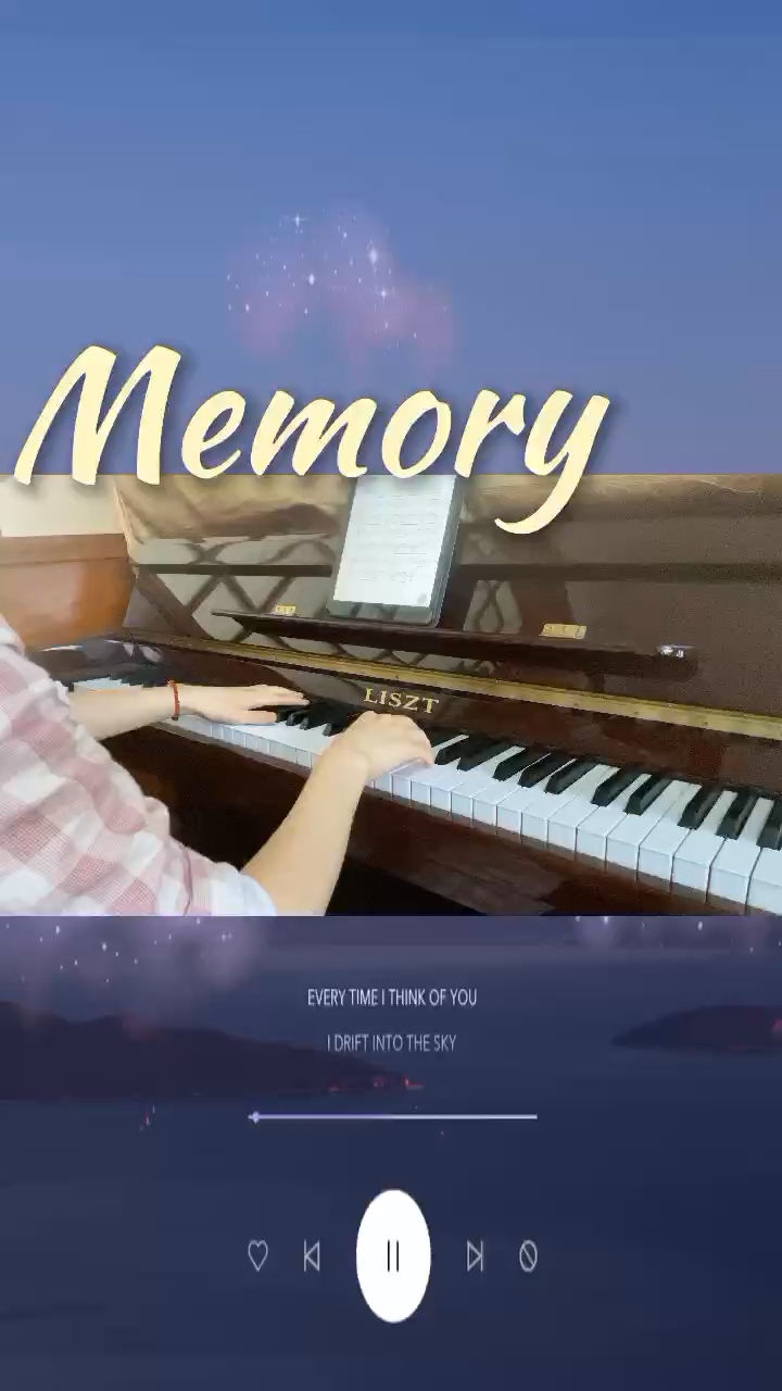 All alone with the memory of my days in the sun.演奏视频