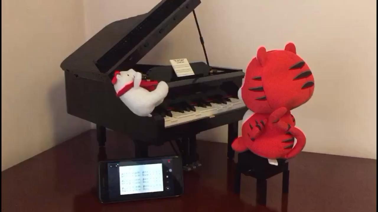 鄙人的代言~演奏视频