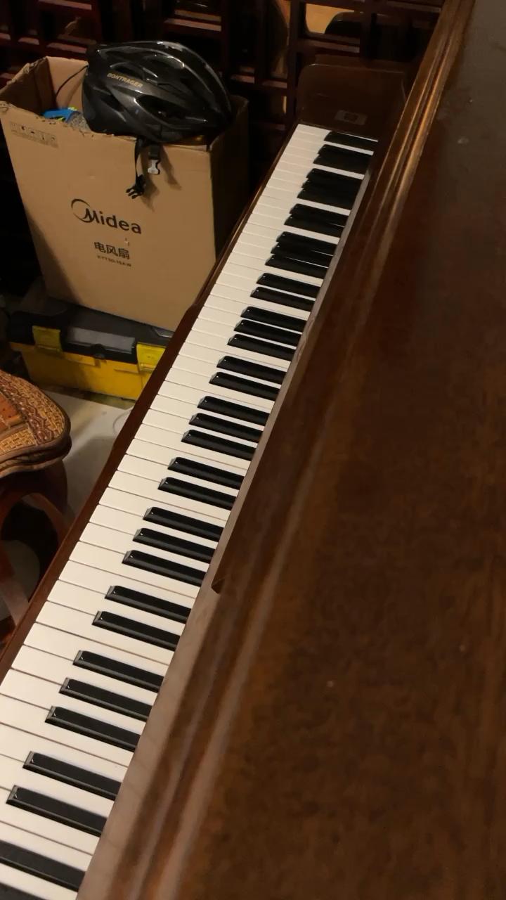 自学钢琴一年半。这首是舒伯特的小夜曲,后来被李斯特改编成纯钢琴版。最近学会了高潮的那一段,所以重新发一遍视频。因为没系统地去练过指法,所以弹不好的地方都是要作用到3 4指的。请各位多多指导演奏视频