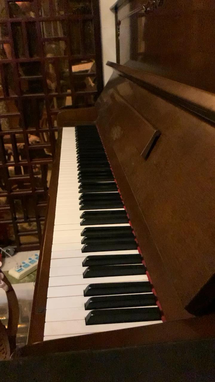 自学钢琴一年多。肖邦的A小调圆舞曲,没有系统性地去练过指法,所以34指的装饰音是我的弱项演奏视频