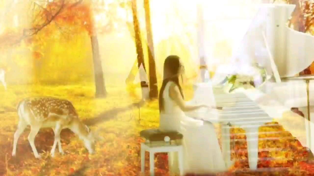 浪漫秋日,应个景,弹一曲。。。演奏视频