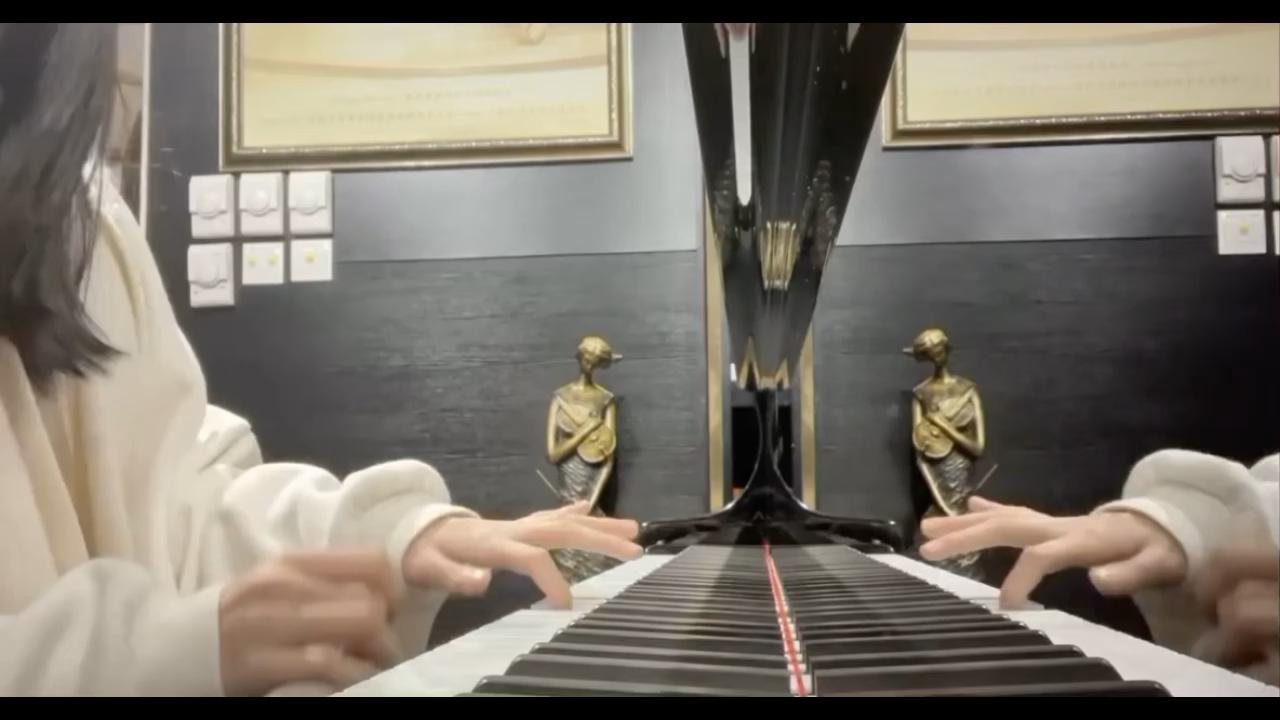 好几年没弹过这个了,仅存的一点点肌肉记忆!!演奏视频